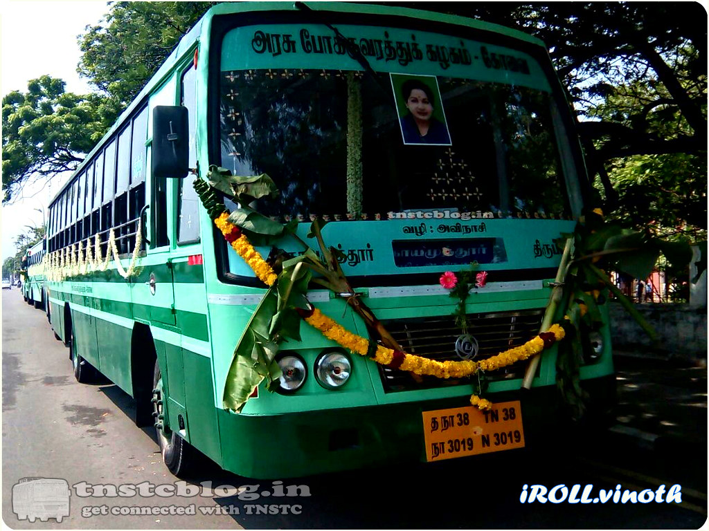 TN-38N-3019 of Head Office Branch Route Coimbatore - Tiruppur