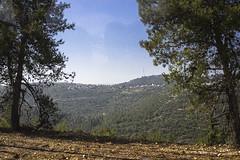 Israel 014
