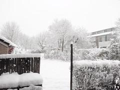 Winter_2009