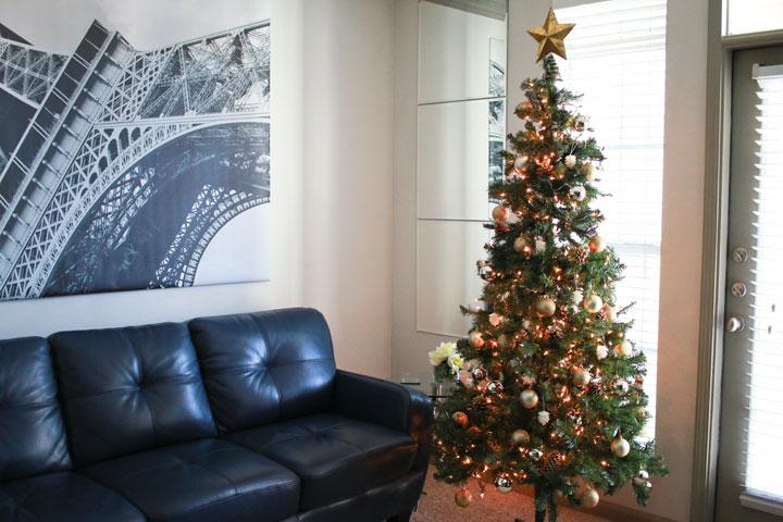 Christmas Tree On A Budget Tree3