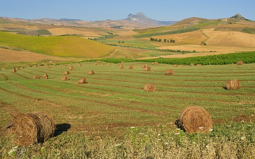 desktop italy landscape farming sicily agriculture haybales corleone featured