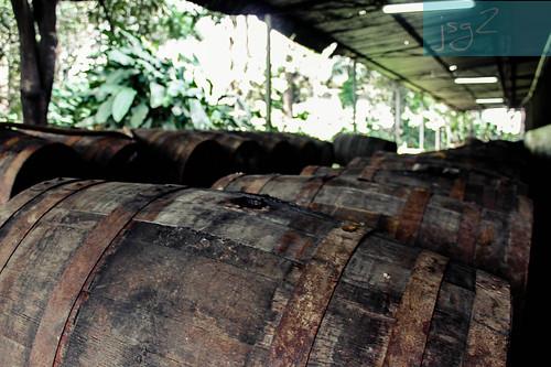 aragua elconsejo haciendasantateresa santateresa rum sugarcane hacemosron jugamosrugby vallesdearagua lavictoria ronsantateresa ronvenezolano ronañejo ron