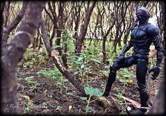 [S.I.C.] Kamen Rider ZO