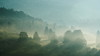 A foggy day somewhere in the Bieszczady