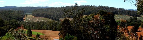2006 Farm and Forestry land from the edge of Werrikimbe NP NSW panorama