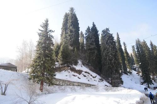 Экскурсия на пик 3 брата (2860м) (1)