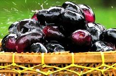buah duwet Makanan khas majalengka