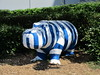 Striped hippo