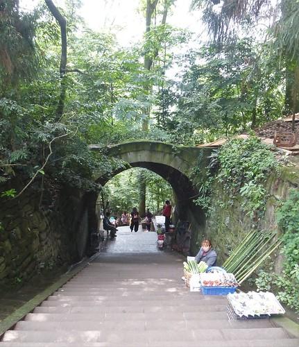 CH-Emeishan-Wannian-Qingyin-sentier (1)