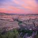 Desert Pink by merrittglenn