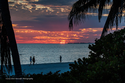 ocean sunset summer usa cloud beach gulfofmexico silhouette palms sundown florida palmtrees fortmyers