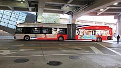 WMATA Metrobus 2015 New Flyer Xcelsior XDE60 #5475