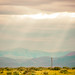 Idaho Sunshine by Thomas Hawk