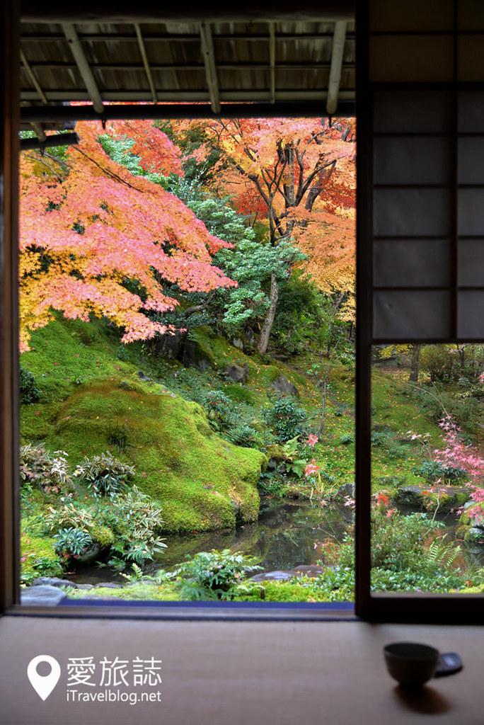 京都賞楓景點 琉璃光院 34