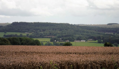 Wardour Hamlet, High Wood and Ansty Down