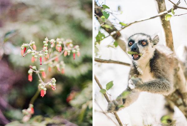 RYALE_Madagascar_Blog2_049