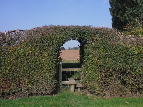 Stile in Hedge Gap