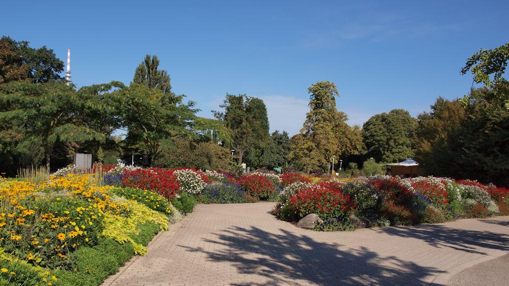 Luisenpark Mannheim: Wechselflorbeete