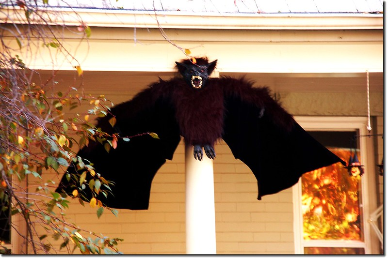 Halloween 家庭布置 6