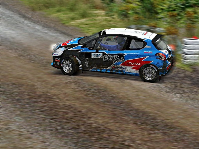Adam Haupt - Peugeot 208 - Rookie Rally Team2