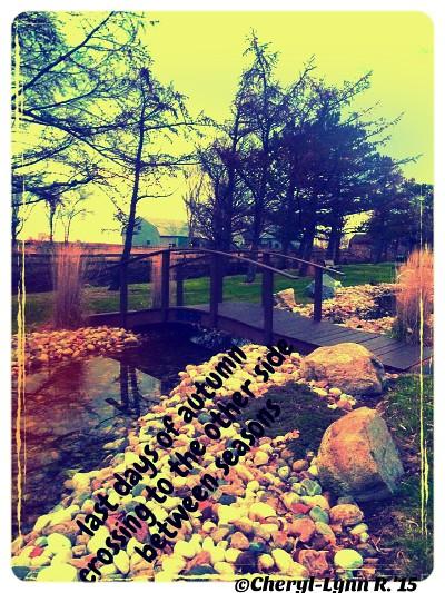 bridging seasons