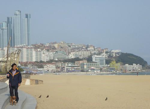 Co-Busan-Plage Haeundae (20)