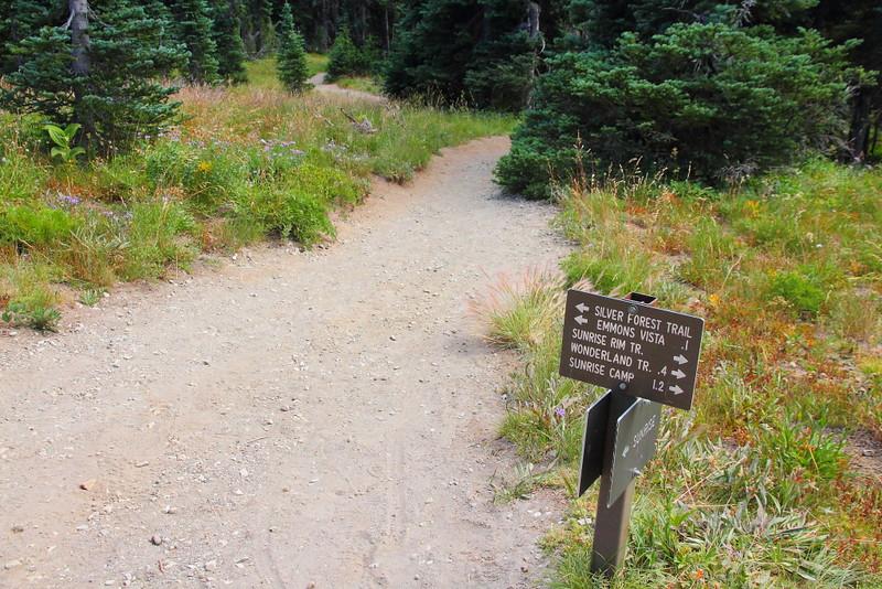 IMG_8921 Sunrise Rim Trail