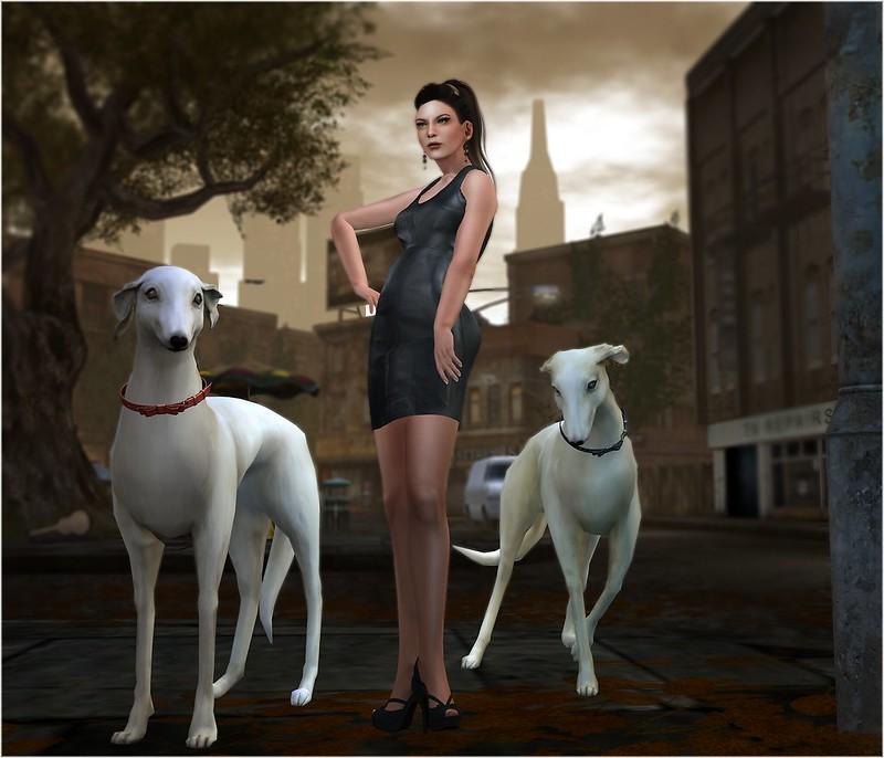 The Elegant Dog Walker