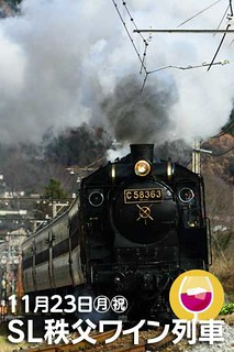 11/23(月祝)SL秩父ワイン列車