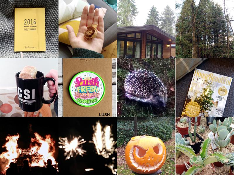 month-in-photos-november-2015-rottenotter-rotten-otter-blog 10