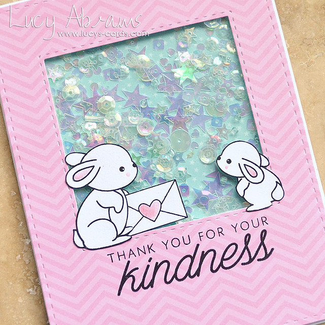 Kindness Shaker Card 2 by Lucy Abrams for SSS