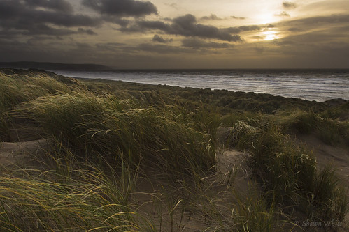 sea plant green beach nature grass weather wales landscape gold coast sand colours place wind unitedkingdom dunes ceredigion lightsource ynyslas shawnwhite canon6d shawnraisindp