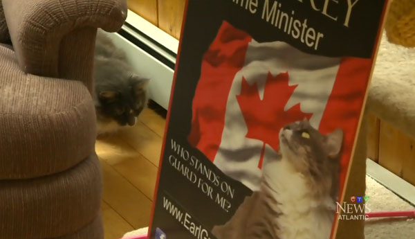 earl-grey-cat-prime-minister