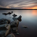 Rocks & water - Siljan by - David Olsson -