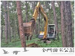 中山林罹病(松材線蟲)枯死松樹伐除作業