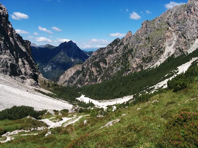 Abstieg Birkenscharte durch die Bergwiesen