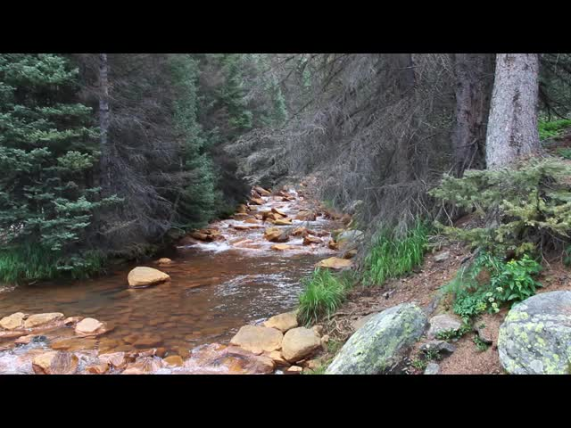 4022 Video of rust-stained Rock Creek where the Vallecito Creek Trail crosses