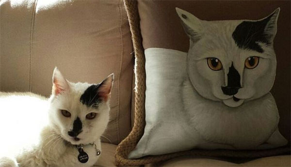 custom-cat-pillows