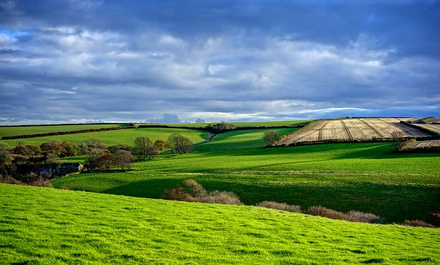 Winter Shadows – South East Cornwall Farmland.
