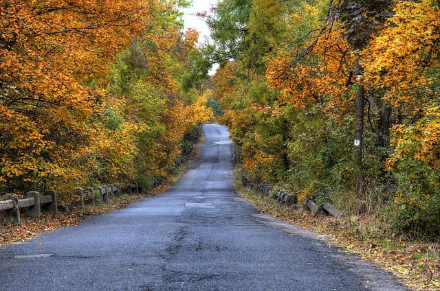 Scenic autumn road