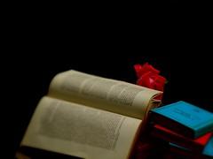 Livres-Libros