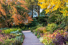 The Heather Garden, Tryon Park, Washington Heights, New York