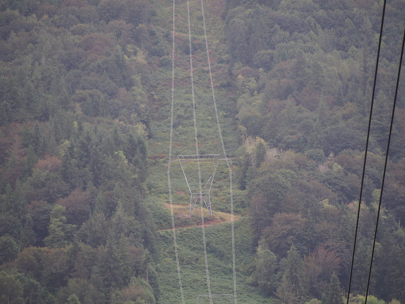 Preston–Snoqualmie Trail in the Distance: The little thing right behind the top of the high-tension tower is the continuation of the trail I was on earlier.