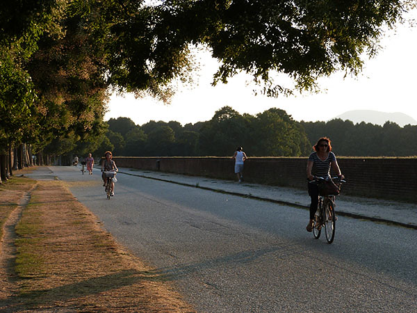 vélos sur les remparts de Lucca