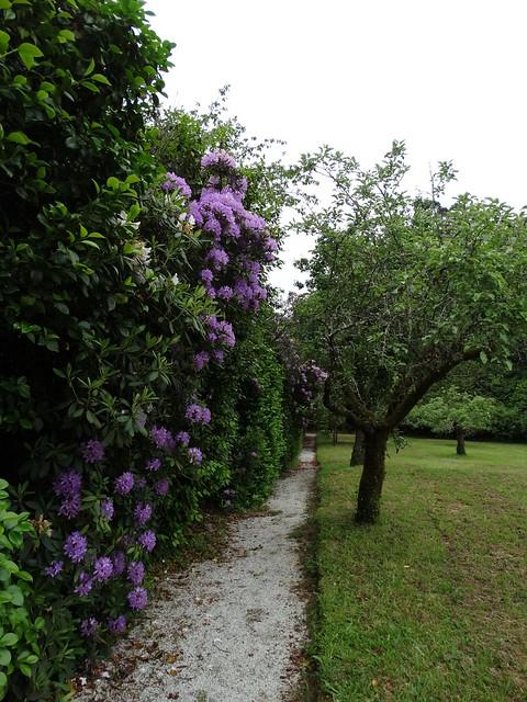 Jardín del Pazo de Santa Cruz de Rivadulla