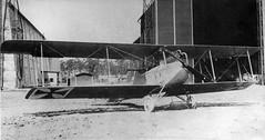 LVG C I 1915  Nowarra photo