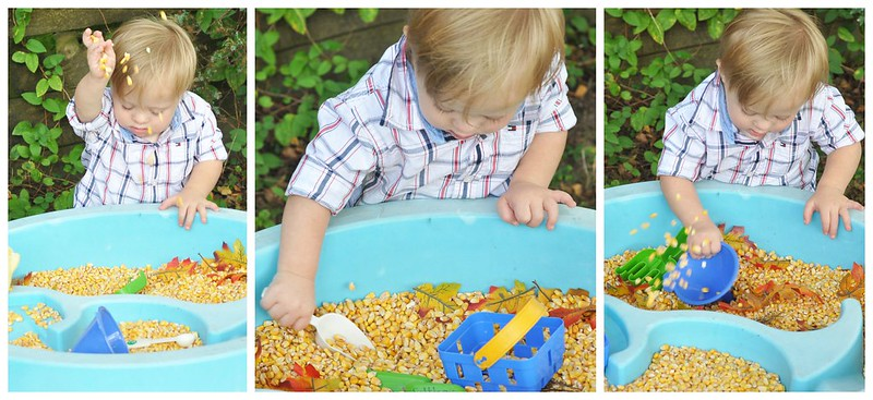Water Table Play that's fit for Fall