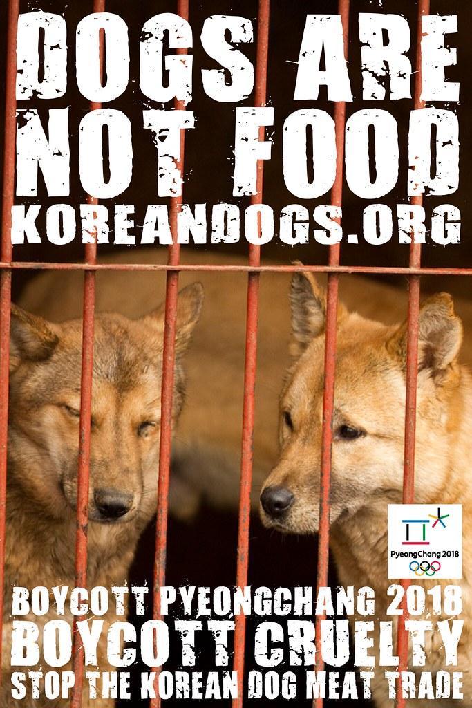 Boycott_Pyeongchang_1440x2160_v