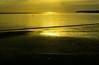 20150807-13_Golden Light at Sunrise