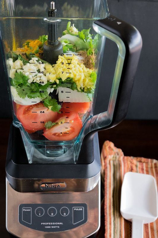 cooks illustrated review food processor